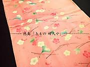 Houmongitokushimakimonofukuya1510